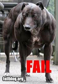 Dog Musscles Fail