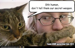 Shh human,don't tell them our secret weapon.