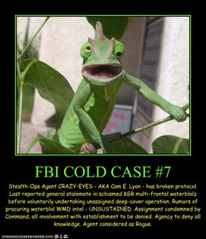 FBI COLD CASE #7