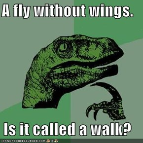 A fly without wings.  Is it called a walk?