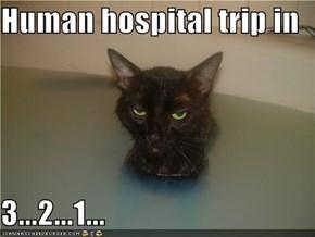 Human hospital trip in  3...2...1...