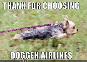 THANX FOR CHOOSING   DOGGEH AIRLINES