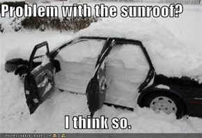 Problem with the sunroof?  I think so.