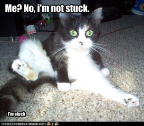 Me? No, i'm not stuck.