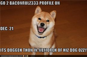 GO 2 BACONRULZ333 PROFILE ON  DEC. 21 ITS DOGGEH THON IN MEMOREH OF HIZ DOG OZZY