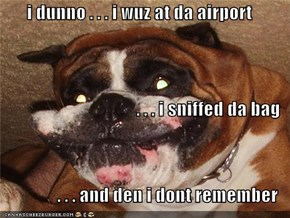 i dunno . . . i wuz at da airport  . . . i sniffed da bag  . . . and den i dont remember