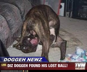 DOGGEH NEWZ - DIZ DOGGEH FOUND HIS LOST BALL!