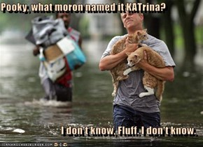 Pooky, what moron named it KATrina?  I don't know, Fluff. I don't know.
