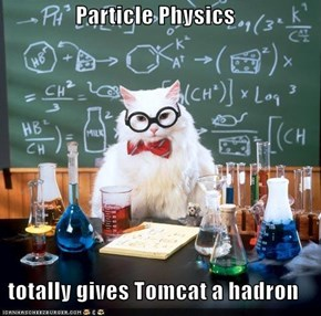 Particle Physics  totally gives Tomcat a hadron