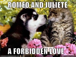 ROMEO AND JULIETE       A FORBIDDEN LOVE