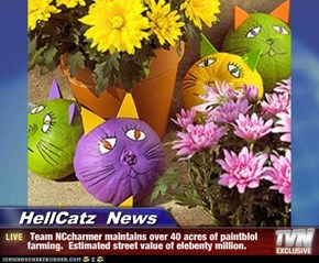 HellCatz  News -  Team NCcharmer maintains over 40 acres of paintblol farming.  Estimated street value of elebenty million.