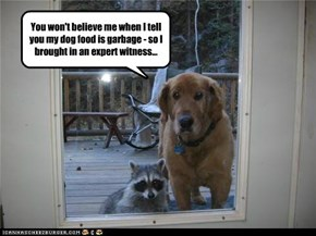 You won't believe me when I tell you my dog food is garbage - so I brought in an expert witness...