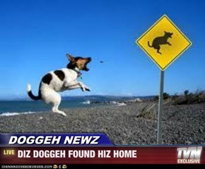 DOGGEH NEWZ - DIZ DOGGEH FOUND HIZ HOME