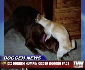 DOGGEH NEWS - DIZ DOGGEH HUMPIN ODDER DOGGEH FACE
