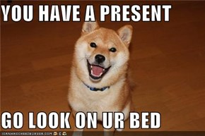 YOU HAVE A PRESENT    GO LOOK ON UR BED