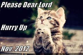 Please Dear Lord Hurry Up Nov. 2012