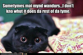 Sumetymes mai mynd wandurs...I don't kno whut it does da rest of da tyme.