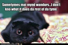 Sumetymes mai mynd wandurs...I don't kno whut it does da rest of da tyme.