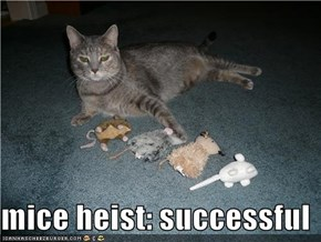 mice heist: successful