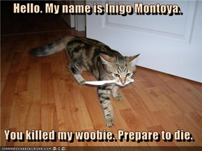 Hello. My name is Inigo Montoya.   You killed my woobie. Prepare to die.