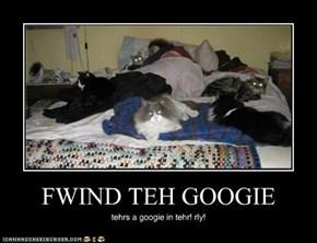 FWIND TEH GOOGIE