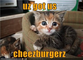 uz got us   cheezburgerz