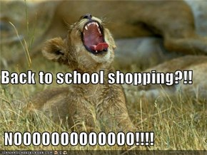 Back to school shopping?!!  NOOOOOOOOOOOOO!!!!
