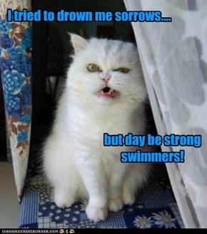 I tried to drown me sorrows....
