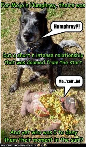 Alas Poor Humphrey!
