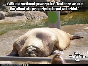 """NWR instructional powerpoint: """"And here we see  the effect of a properly deployed waterblol."""""""