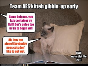 Team AES kitteh gibbin' up early