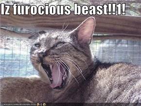 Iz furocious beast!!1!
