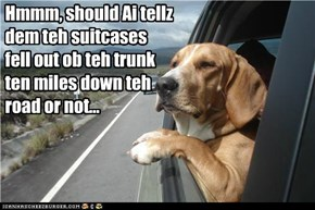Hmmm, should Ai tellz dem teh suitcases fell out ob teh trunk ten miles down teh road or not...