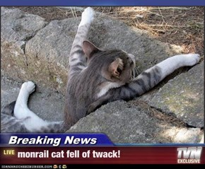 Breaking News - monrail cat fell of twack!