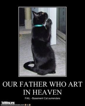 Basement Cat FAIL