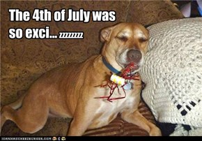 The 4th of July was so exci...