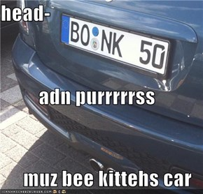 head- adn purrrrrss muz bee kittehs car
