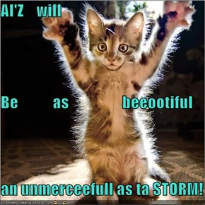 AI'Z    will Be           as                 beeootiful an unmerceefull as ta STORM!