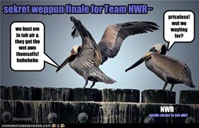 sekret weppun finale for Team NWR~