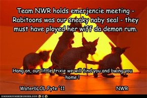 Team NWR holds emerjencie meeting - Rabitoons was our sneaky naby seal - they must have ployed her wiff da demon rum.