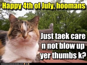"Happy 4th from a ""caring"" kitteh"