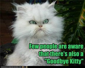 "Few people are aware that there's also a ""Goodbye Kitty"""