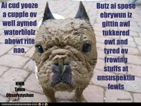 Ai cud yooze  a cupple ov well aymed waterblolz  abowt rite nao.