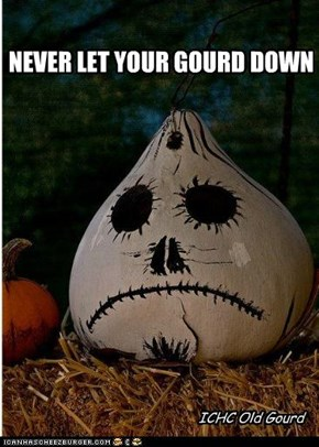 Old Gourd: Always There For You