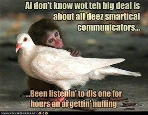 Ai don't know wot teh big deal is about all deez smartical communicators...