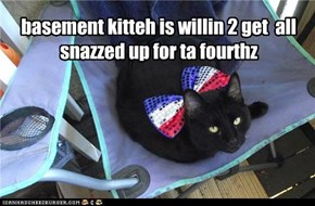 basement kitteh is willin 2 get  all snazzed up for ta fourthz