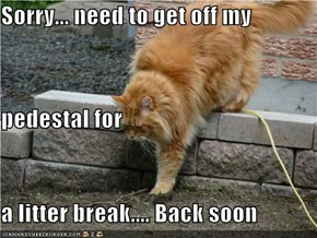 Sorry... need to get off my pedestal for  a litter break.... Back soon