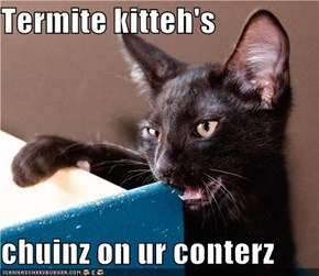 Termite kitteh's  chuinz on ur conterz