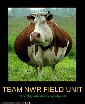 TEAM NWR FIELD UNIT