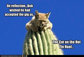 On reflection...Bob wished he had accepted the gig as...